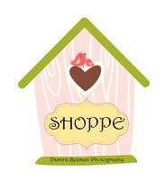 Pink birdhouse Shoppe