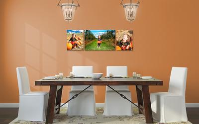 Cottage-Chic dining room orange harvest Trilogy